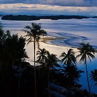 Palm trees silhouetted at sunset in Gizo, Solomon Islands