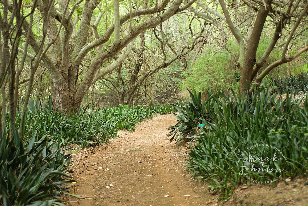 Koko Crater Botanical Garden Honolulu Oahu Hawaii