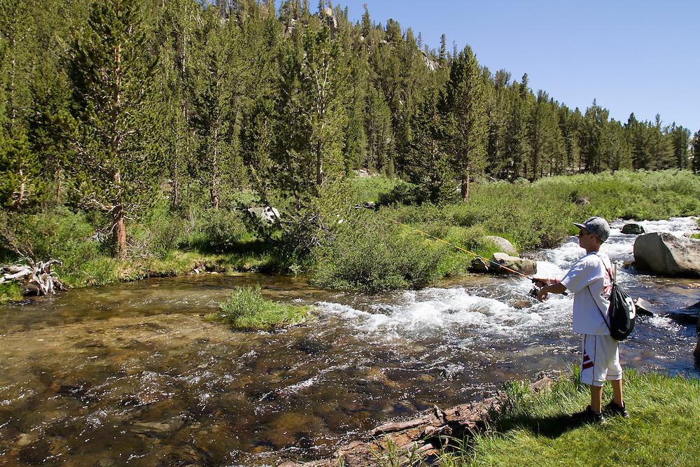 Rock creek in eastern sierra mountains todd bigelow for Rock creek fishing
