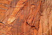 Sandstone details. Captiol Reef National Park, Utah.