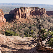Independence Monument and Monument Canyon, Colorado National Monument, near Grand Junction and Fruita, Colorado, USA. This desert land is high on the Colorado Plateau dotted with pinion and juniper forests. This panorama was stitched from 5 overlapping photos.