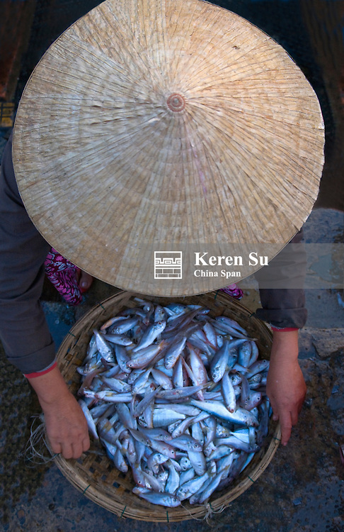 Woman with conical hat at fish market, Hoi An, Vietnam