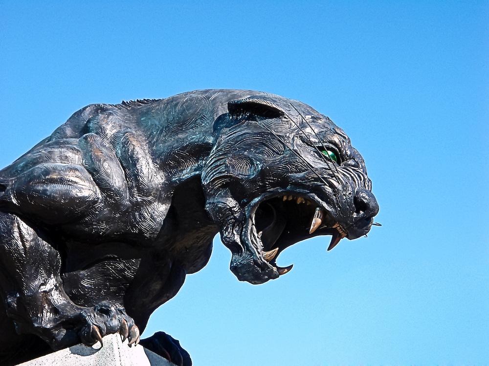 Carolina Panthers Sculpture Nfl Scott Lepage Photographer