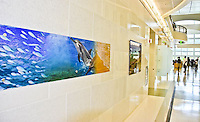 Tim Rock images in the new Guam Naval Hospital