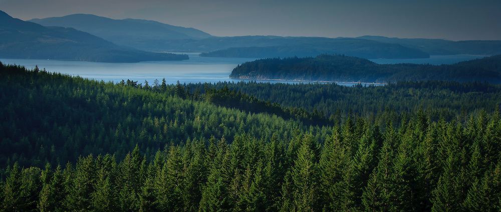 Douglas Fir forests, Hood Canal, Toandos, Peninsula, Dabob Bay, Quilcene Bay and the Olympic Peninsula as seen from Green Mountain on the Kitsap Peninsula in Puget Sound, Washington state, USA.