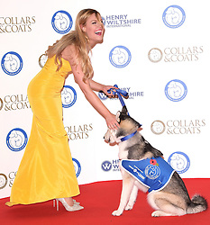 Battersea Dogs and Cats Home's Annual Collars and Coats Gala Ball at Battersea Evolution, Battersea Park, London on Thursday 12 November 2015