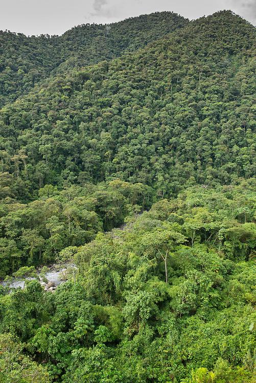 South America; Peru; Amazonia; Manu; National Park; UNESCO; World Heritage;clud forest