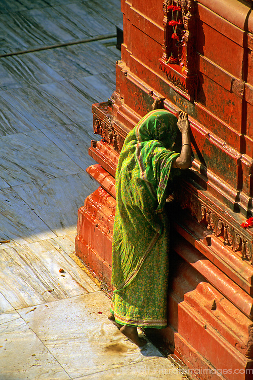 "Asia, India, Varanasi. A Hindu woman prays at the ochre-colored Durga or ""monkey"" temple in Varanasi."