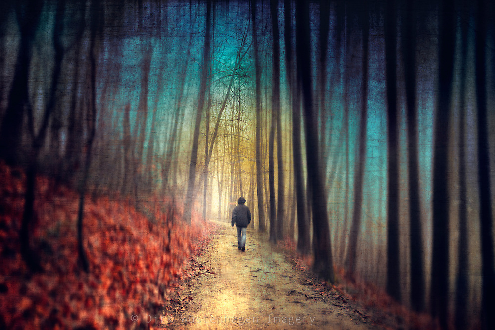Man walking through a dreamy colourful forest. Manipulated photo.