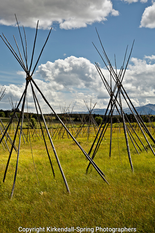 MT00083-00...MONTANA - Ghost teepees, poles standing to mark the location of where people were sleeping the night of the slaughter at the Big Hole National Battlefield.