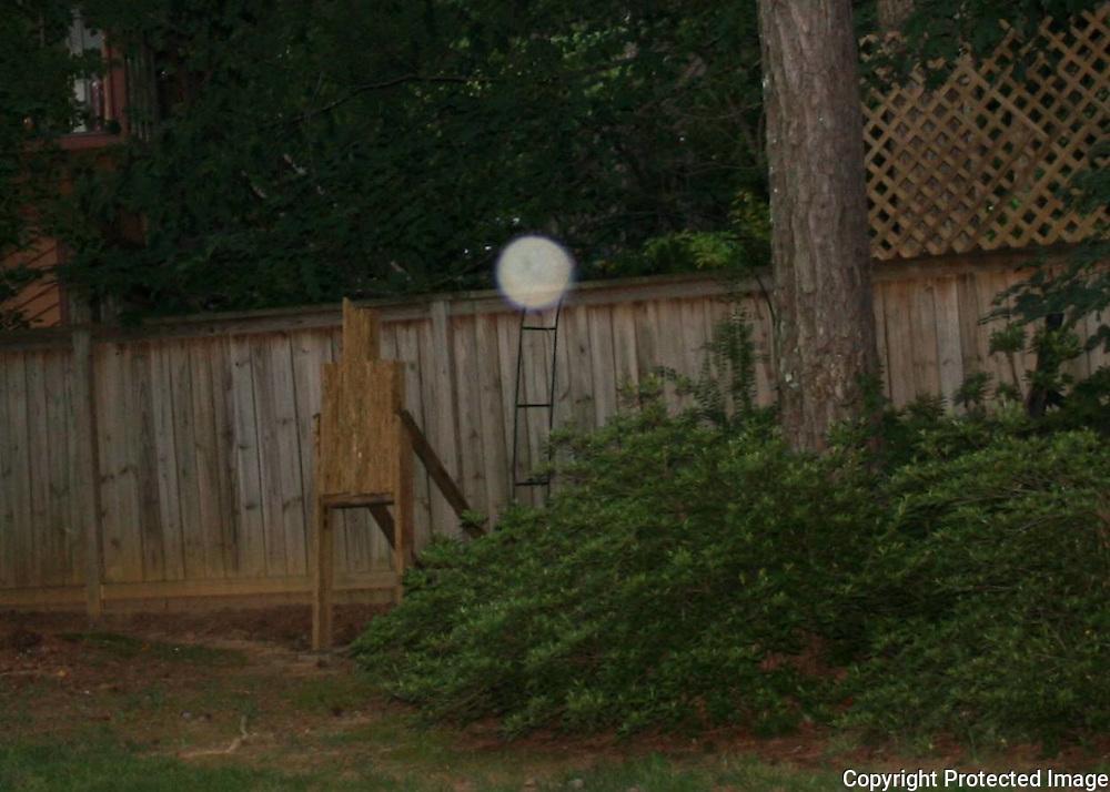 A large pearl like orb floating over azalea bushes near the fence at dusk.