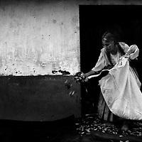 Bolivia -  San Jose - Coripata - una contadina di coca prepara la foglia per l'essiccazione