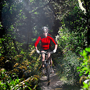 SHOT 9/16/11 8:53:12 AM - Margaret Ebeling of Denver, Co. rides the Spruce Mountain Trail, a 5.5 mile roundtrip loop trail in the Douglas County Open Space system near the town of Palmer Lake, Co. The trail ascends Spruce Mountain through a Ponderosa pine and Douglas fir forest. The first lookout offers breathtaking views of Greenland Open Space, surrounding buttes, Pikes Peak, the Palmer Divide, Carpenter Creek and thousands of acres of protected open space. Mountain biking, hiking and dog walking on a leash are all options for the trail. (Photo by Marc Piscotty /  © 2011)