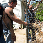 "Rescue Ink, Long Island, New York, taettowierte Motoradgang, Verein zur Rettung mishandelter Hunde und anderer Tierarten.vlnr:.""Batzo"", ""Big Ant"",Joe Panz, .Rescue Ink, the animal rescue group that brings an in your face approach to the fight against animal abuse and neglect. The goups members are heavily tattooed and ride motorbikes. Their pitbull 'Rebel', who lives at their headquarters, was rescued from a dog fighting operation, where he was used as bait. He was near death when two members of Rescue Ink flew to Virginia to save him..Foto © Stefan Falke."