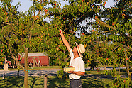 BREEZE HILL FARM & PRESERVE PECONIC, Retouching not Finished