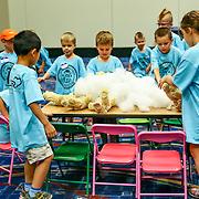 Cardinal Health RBC 2016. Camp Cardinal Rompers, Navy Pier Activities - Build a Bear. Photo by Alabastro Photography.