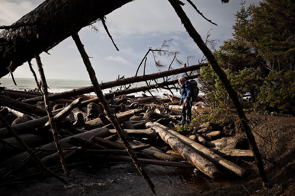 A hiker stands in a log jam at Third Beach, Olympic National Park, Washington.