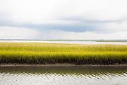 North Carolina low country marsh