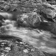 Sweet Creek Lower Cascade Falls - Mapleton, Oregon - HDR - Black & White