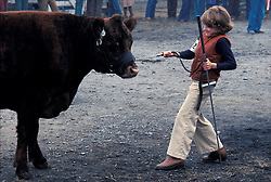 Young 4H farm family girl struggles with her prize champion cow cattle at livestock yards