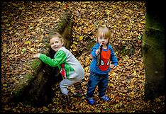 OCT 26 2014 Children in the forest