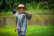 A farmer works in the rain in Nakhon Nayok, Thailand