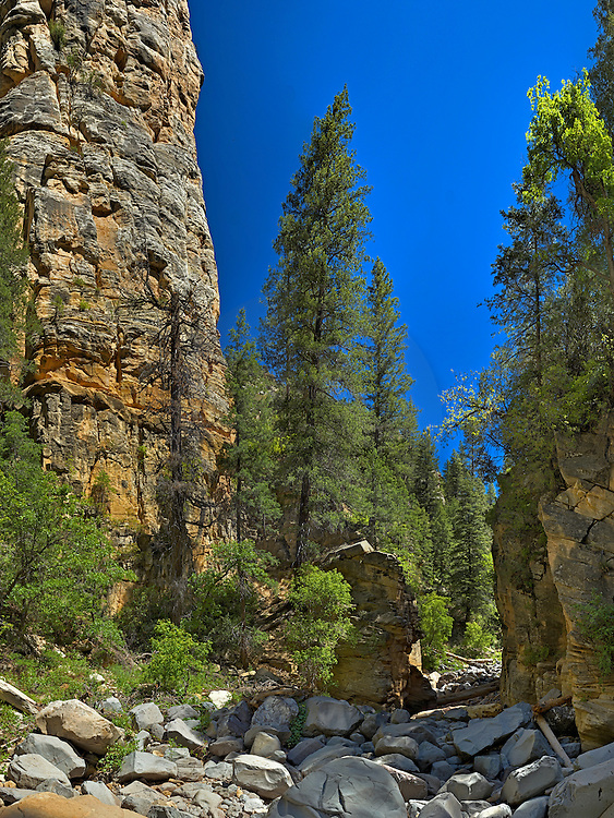Pumphouse wash, littered with huge boulders and coconino sandstone cliffs.