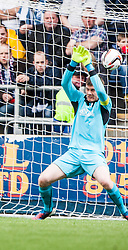 Queen of the South's Bob McHugh (9) scoring their goal past Falkirk's keeper Michael McGovern.<br /> Half time : Falkirk 0 v 1 Queen of the South, Scottish Premiership play-off quarter-final second leg played today at the Falkirk Stadium.<br /> &copy; Michael Schofield.