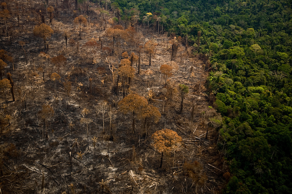 Para State, Brazil. August 25th 2007. Flight from Cuiaba to Alta Floresta (Brazilian Amazon). Aerial view of the rainforest during the burning season were big sections are set on fire by farmers to be cleared for soy farming or cattle breeding.