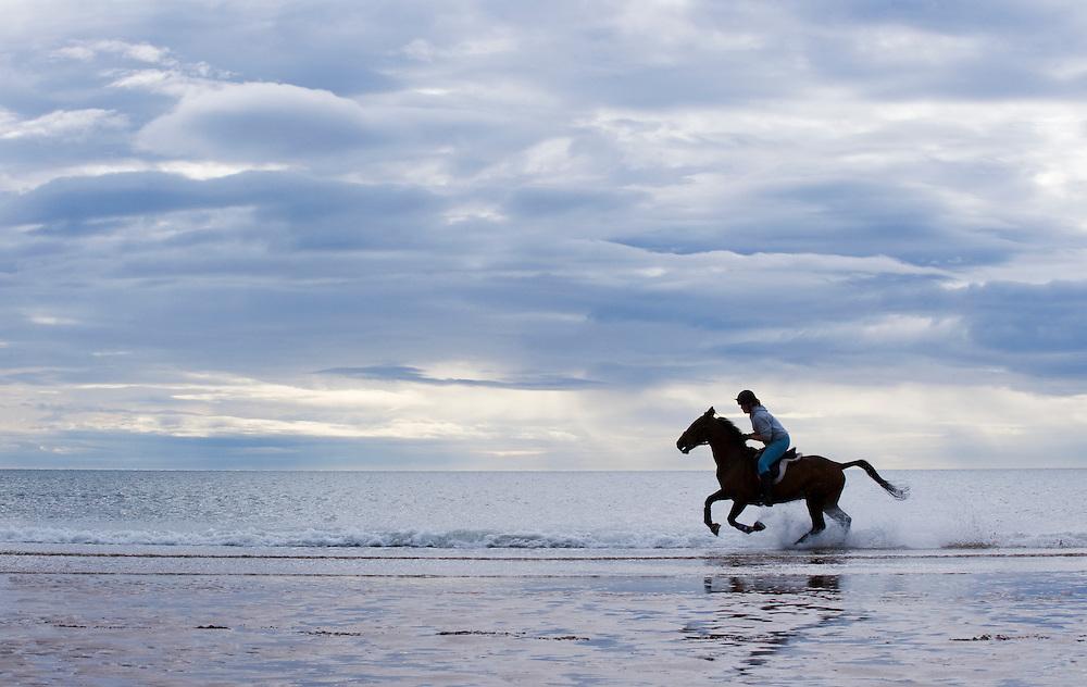 Woman on horseback at the edge of the North Sea, Scotland