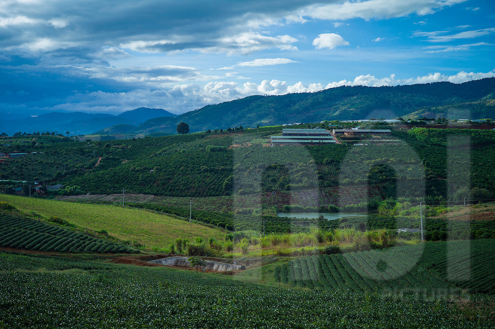Agrarian landscape of coffee plantations between Lam Ha and Da Lat, Vietnam, Southeast Asia