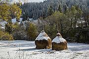 Hay, hay stacks, traditional, farming, snow, Romania, Bucovina