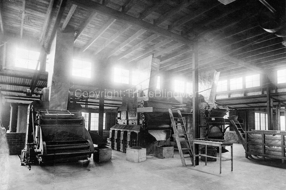 Skeen, Interior of a Tea Factory.