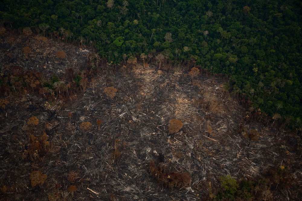 Para State, Brazil. August 25th 2007. Flight from Cuiaba to Alta Floresta (Brazilian Amazon). Aerial view of the rainforets during the burning season were big sections are set on fire by farmers to be cleared for soy farming or cattle breeding.