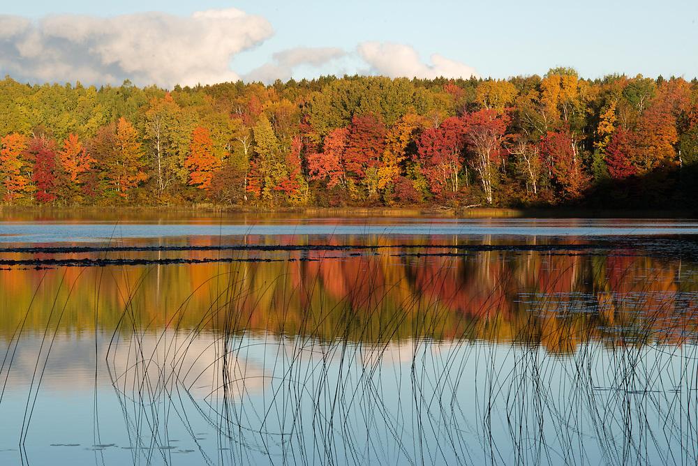 Thornton Lake<br /> Hiawatha National Forest