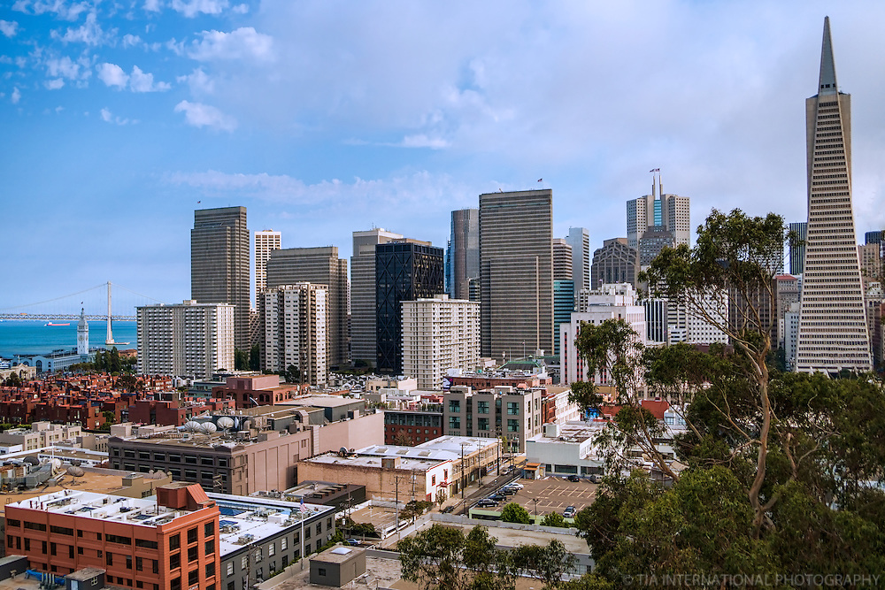 SF Skyline from Telegraph Hill