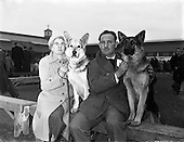 1959 - Irish Kennel Club  Dog Show at the  R.D.S.