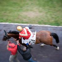 Roma - 07 Novembre 2010.Derby equitazione all' Ippodromo di Capannelle.Un fantino sale a cavallo.foto:Stefano Meluni