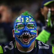 A Seattle Seahawks fan cheers against the Carolina Panthers. The Seahawks defeated the Panthers 31-17 in the NFC Divisional Playoff. Photographed on Saturday January 10, 2015 at CenturyLink Field in Seattle. (Joshua Trujillo, seattlepi.com)