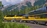 Alaska; Summer scenic of the Alaska Railroad leaving the Denali Station northbound toward Fairbanks.
