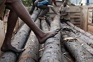 MWANZA, TANZANIA.  Railway workers move creosote treated telephone poles from a railroad freight car to a tractor-trailer in Mwanza, Tanzania on Saturday, September 6, 2014.  © Chet Gordon/THE IMAGE WORKS