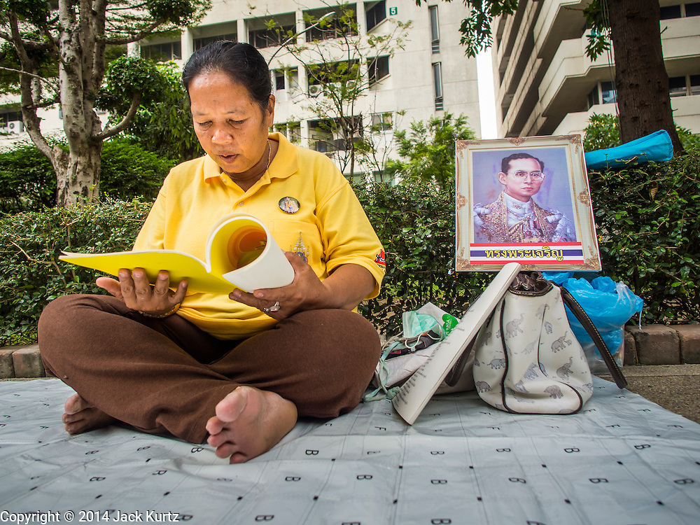 28 NOVEMBER 2014 - BANGKOK, THAILAND: A woman on the plaza in front of Siriraj Hospital prays for Bhumibol Adulyadej, the King of Thailand. She set up a portrait of the King next to her. The King was born on December 5, 1927, in Cambridge, Massachusetts. The family was in the United States because his father, Prince Mahidol, was studying Public Health at Harvard University. He has reigned since 1946 and is the world's currently reigning longest serving monarch and the longest serving monarch in Thai history. Bhumibol, who is in poor health, is revered by the Thai people. His birthday is a national holiday and is also celebrated as Father's Day. He is currently hospitalized in Siriraj Hospital, recovering from a series of health setbacks. Thousands of people come to the hospital every day to sign get well cards for the King. People wear yellow at events associated with the King because he was born on a Monday, and yellow is Monday's color in Thai culture. It's also the color of the monarchy.       PHOTO BY JACK KURTZ