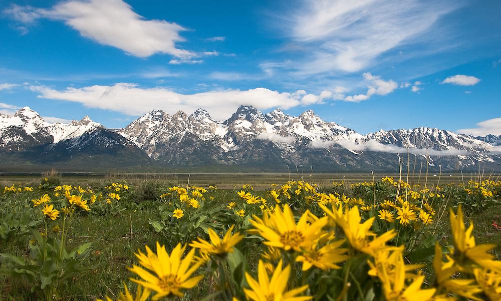 Grand Tetons Mountain Range, Grand Tetons National Park, Wyoming.