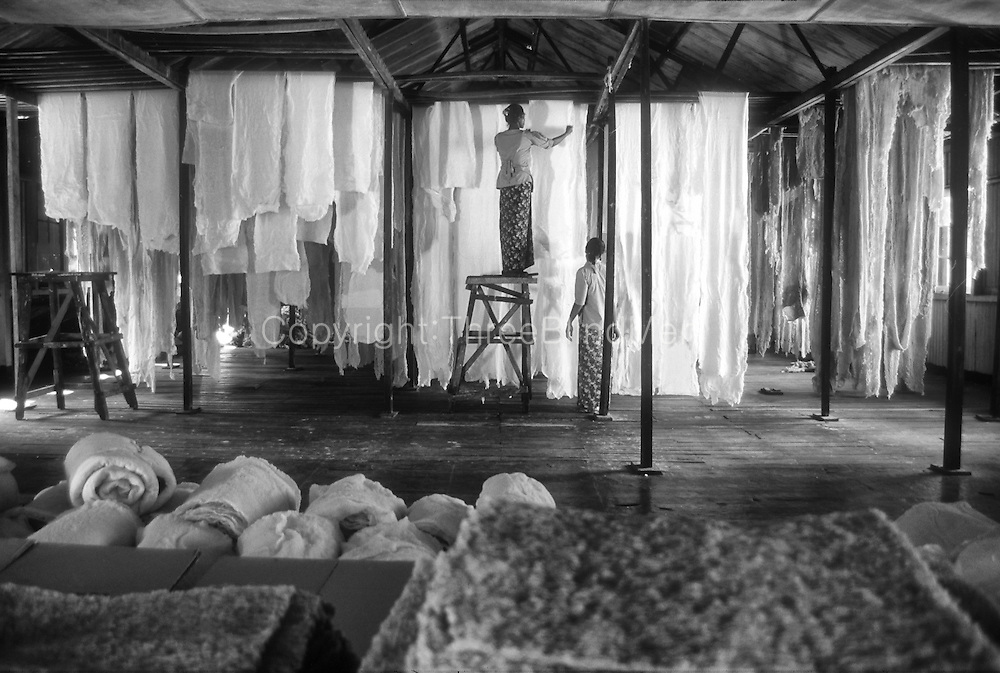 Interior of a crepe rubber factory., The rubber is sorted into categories by colour - white being the best. <br />