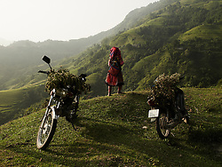 An ethnic woman standing between two motorbikes loaded with cut branches overlooks the valley and mountainous landscape of Ha Giang Province, Vietnam, Southeast Asia.