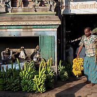 Madurai's morning market, Tamil Nadu, India