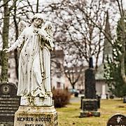Lademoen kirkegård miljøstabilisering Nomias