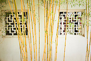 Bamboo and Windows / Liu Fang Yuan Classical Chinese Gardens at The Huntington, San Marino, California