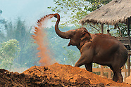 Travel Highlights of Mainland Thailand