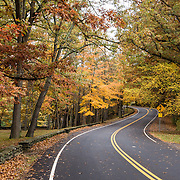 Fall colors in mid October brighten the curvy road at Tea Table Rock picnic area in Letchworth State Park, Portageville, New York, USA. The large park stretches 17 miles between Portageville and Mount Morris in the state of New York, USA. Drive or hike to many scenic viewpoints along the west side of the gorge. The best walk is along Gorge Trail #1 above Portage Canyon from Lower Genesee Falls (70 ft high), to Inspiration Point, to Middle Genesee Falls (tallest, 107 ft), to Upper Genesee Falls (70 ft high). The native Seneca people were largely forced out after the American Revolutionary War, as they had been allies of the defeated British. Letchworth's huge campground has 270 generously-spaced electric sites.